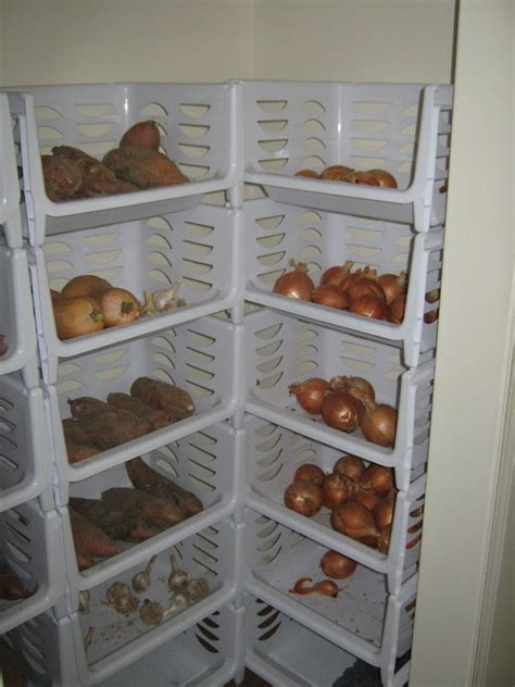 how we store our vegetables without a root cellar