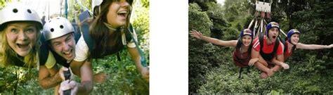 rainforest swing weight limit rainforest swing weight limit