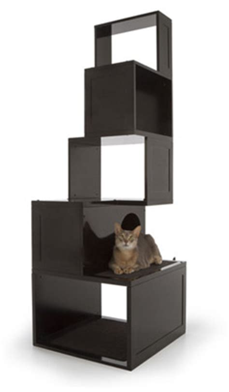 modern cat tree and climbing shelves from designer pet