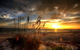 Fort Myers Flowers - sunrise full hd wallpaper and background 1920x1200 id