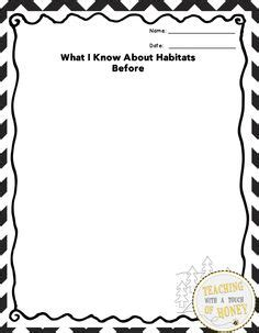 animal trading card template 1000 images about habitat activities on