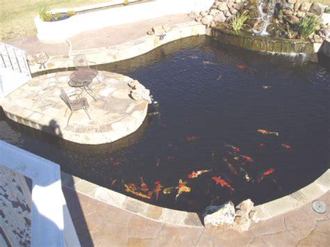 million dollar backyard pond waterfall and koi pond
