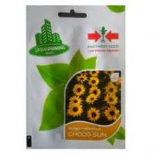 Benih Bunga Marigold Maharani 10s tanaman sirih hijau