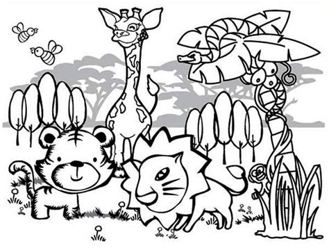 cute rainforest animals coloring page  print