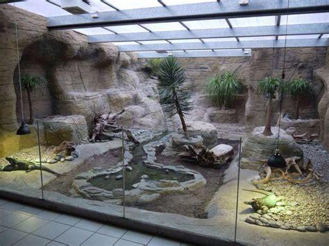 hey hubby build        good basement   waste reptile habitat