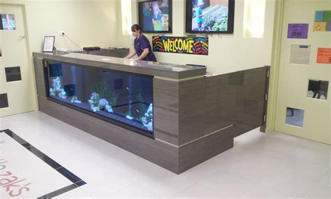 Fish Tank Reception Desk Custom Kitchens In Camden Creative Kitchens