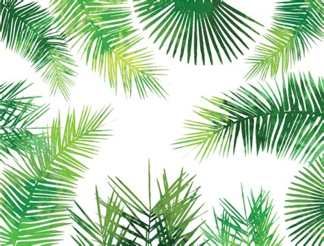 tropical pattern png inkess