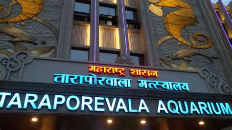 aquarium design mumbai taraporewala aquarium junglekey in image