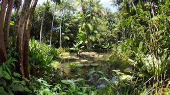 What Is A Botanical Garden 7 Reasons To Visit Singapore Botanic Gardens Visitsingapore