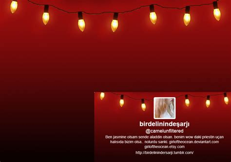 Lights Twitter My 2013 Christmas Lights Twitter By Girloftheocean On