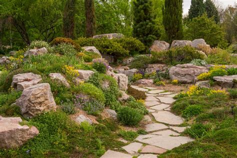 Water Rock Garden Low Water Rock Gardens Hgtv