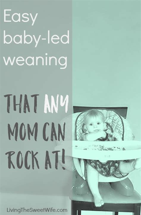 the baby led weaning quick easy baby led weaning that any mom can rock at led weaning mom and babies