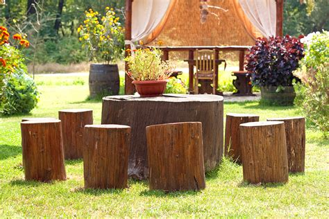 tree trunk table and chairs tree stumps into furniture and other useful items