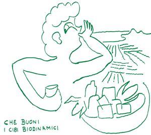 corso di cucina pavia corso di alimentazione e cucina biodinamica pavia 16 18