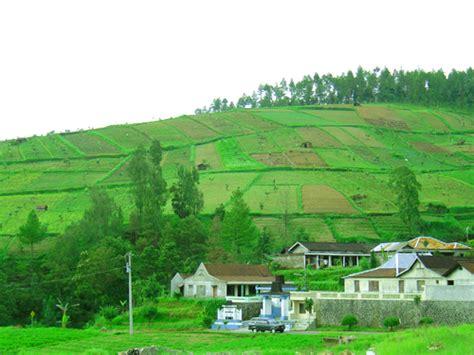 unduh wallpaper alam desa wisata tawangmangu tempat wisata foto gambar