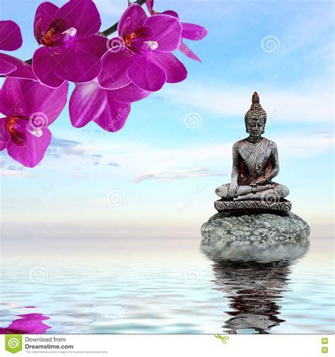 imagenes zen agua el zen stone las flores de la orqu 237 dea y buda reflejaron
