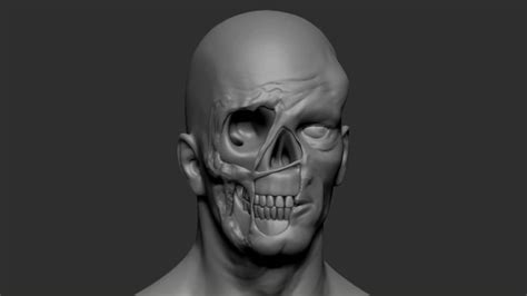 zbrush boolean tutorial zbrush creating a zombie using dynamesh tutorial