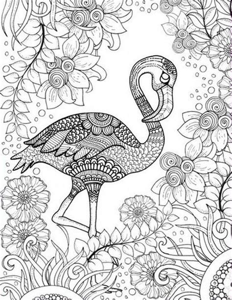 printable coloring pages for adults birds free printable adult coloring page of pink flamingo bird
