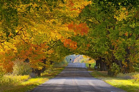 fall color less crowded fall foliage destinations you ve never