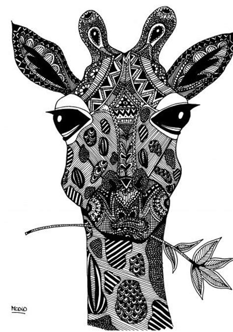 coloring pages for adults giraffe free coloring pages up for grown ups teodoro