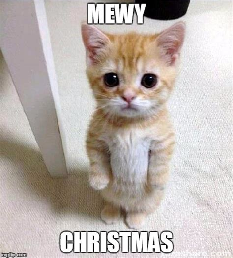 Cute Christmas Meme - and a happy mew year imgflip