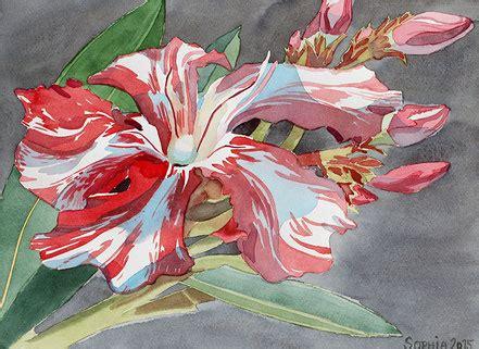 kewpie oleander greeting messages oleander haus