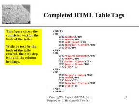 Table Tag Html by New Perspectives On Creating Web Pages With Html Ppt