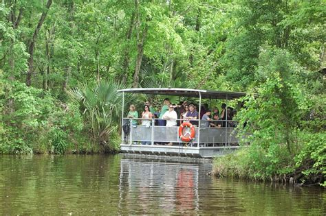 airboat sw tours near new orleans 10 amazing louisiana outdoor activities