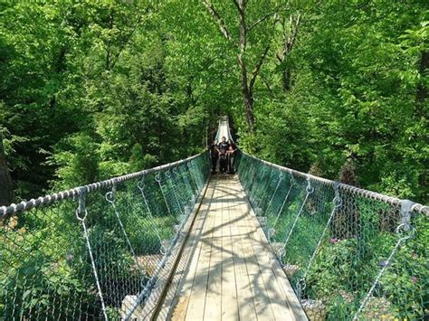 swinging bridge tennessee longest swinging bridge in america picture of
