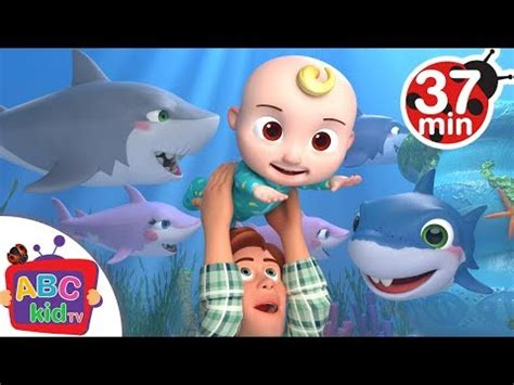 baby shark zumba free download download abc tv 3gp mp4 focuswap