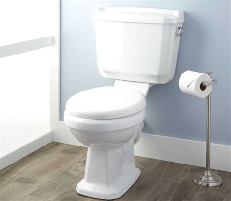 buying guide rear outlet toilets