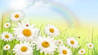 Home Design 3d Outdoor Pc cheerful sunday morning rainbow soft grass auab