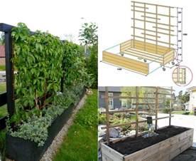 terrasse sichtschutz welche pflanzen als sichtschutz f 252 r garten und terrasse