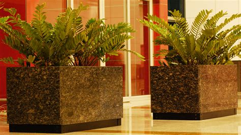 Movable Planters by Planters Movable And Fixed Odyssey Abstractions In
