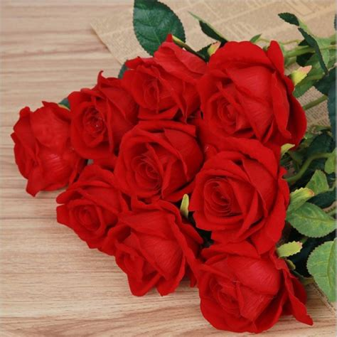 Real Roses Images