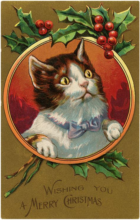 antique christmas kitten frame postcard  graphics fairy