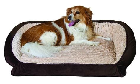 serta pet bed serta pet beds bolster memory foam pet bed ebay