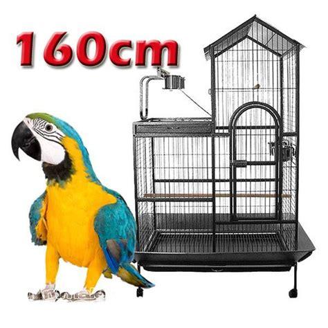gabbia per cenerino vendita uccelli da allevatore a catania tutto per gli