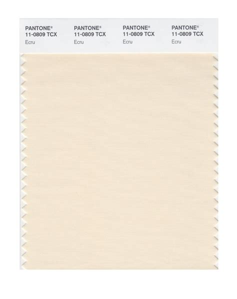 Interior Color For Home by Buy Pantone Smart Swatch 11 0809 Ecru