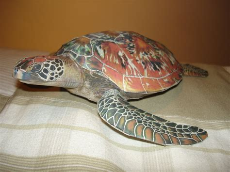 Papercraft Turtle - sea turtle papercraft by brunopigh on deviantart