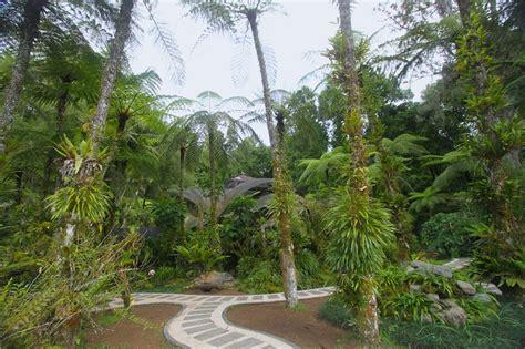 Bali Botanic Gardens Bali Botanic Garden Asian Itinerary