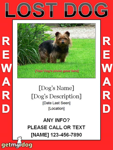 templates for lost pet flyers 13 psd lost dog flyer templates free premium templates