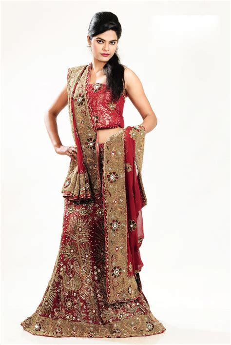 lehenga choli saree designs blouse designs 2014 style