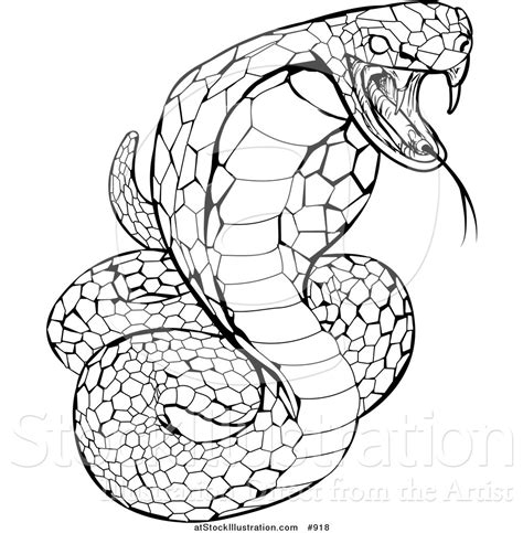 vector illustration of a black and white striking venomous