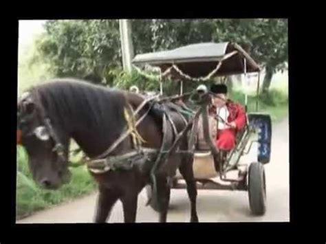 balita goyang lucu mp4 gajah menggila chaiya chaiya doovi