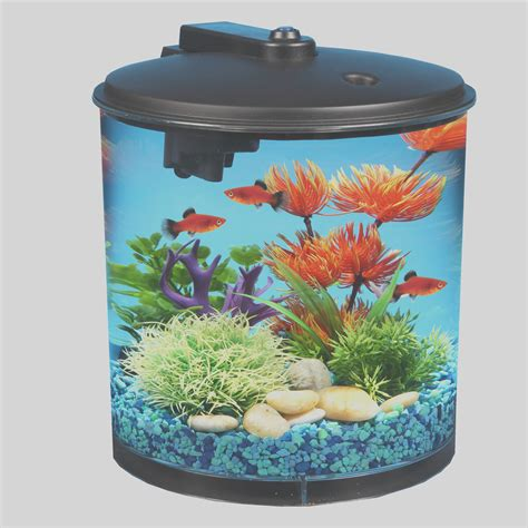 Set Golfish Kid 19 ideas to organize your own does walmart sell live fish