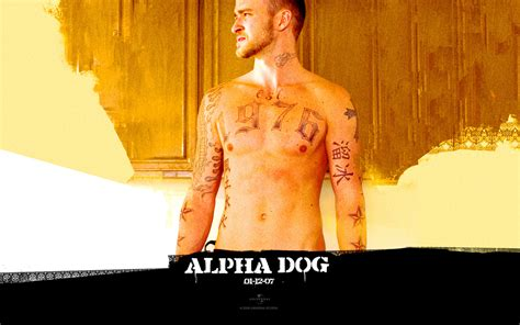 alpha dogs alpha images alpha hd wallpaper and background photos 27276538