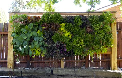 Brise Vue Terrasse 2112 by Our Vertical Garden At Garden 6 Of The Idaho Botanical