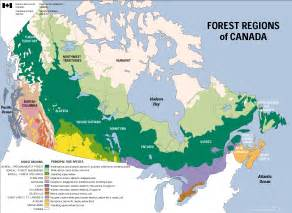 vegetation map of us and canada the regions definding canada eh
