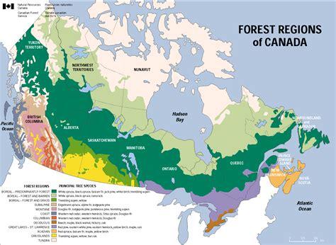 canadian map regions the regions definding canada eh